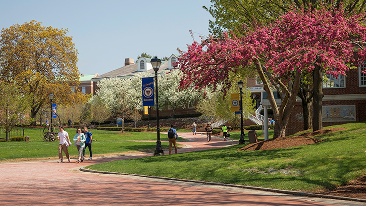 Campus in the spring.